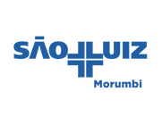 10439-Logo São Luiz Morumbi Alta.png