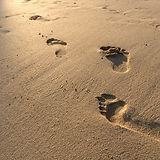 Footprints in the sand at sunset.jpg