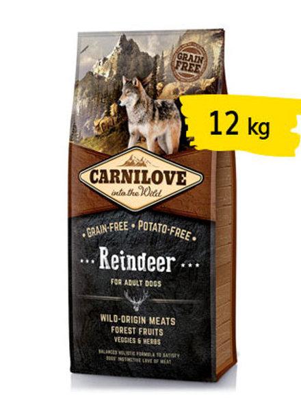 Carnilove adult renna 12kg