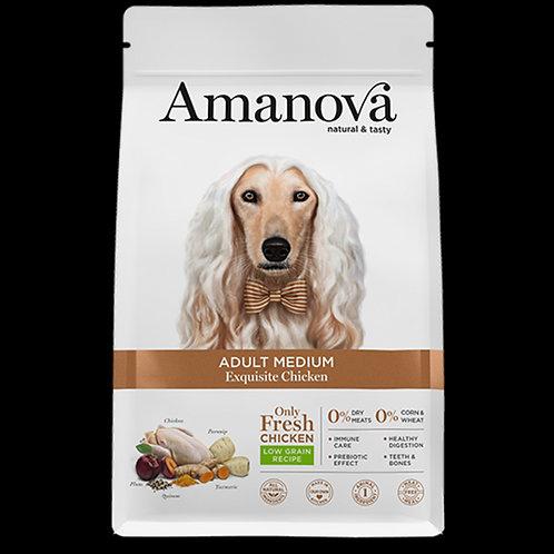 Amanova adult medium pollo