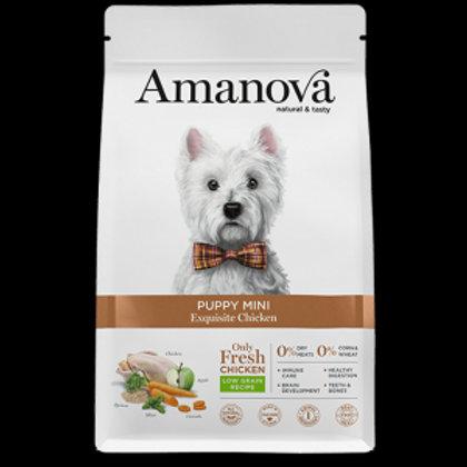 Amanova puppy mini Pollo