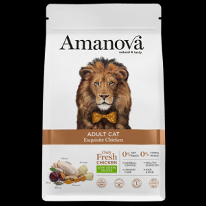 Amanova adult exquisite pollo