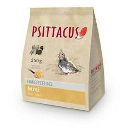 Psittacus hand feeding 350g