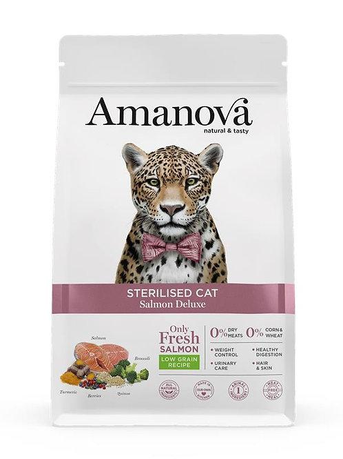 Amanova sterilised cat Samone