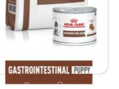 Royal Canin Gastrointestinal Puppy 200g
