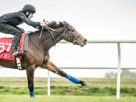 No stopping Micky Cleere as next breeze-up date approaches