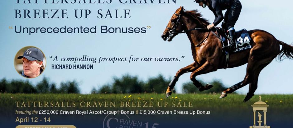 Tattersalls Craven Breeze Up Catalogue Online Now