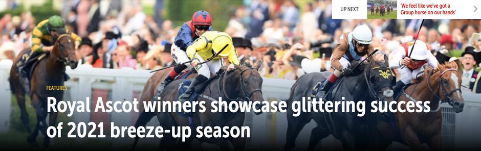 Royal Ascot winners showcase glittering success of 2021 breeze-up season