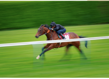 ARQANA Breeze Up Sale to take place on May 26-28 at Doncaster