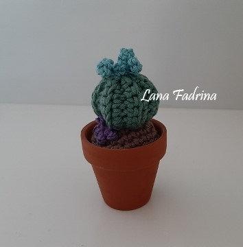 Maceta mini Cactus S