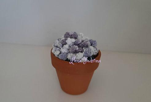 Maceta mediana Flor rizada