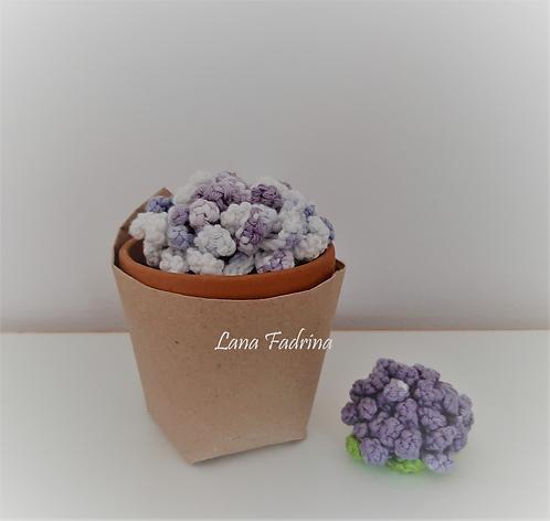 Pack Maceta mediana y broche Flor Rizada