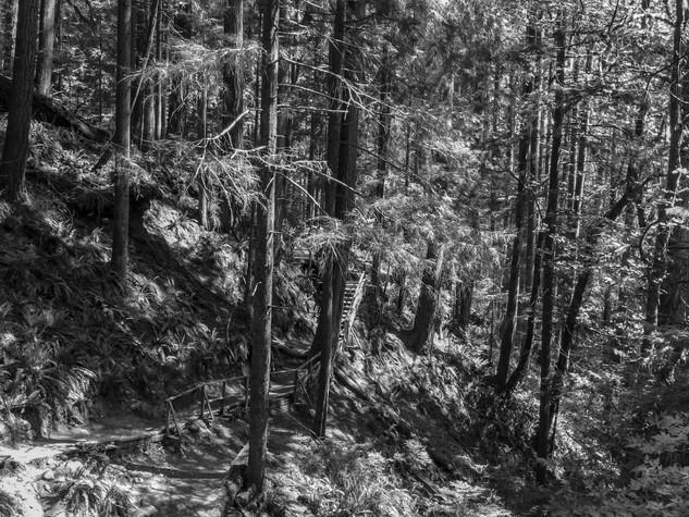 Quarry Rock, North Vancouver