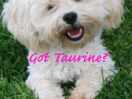 Got Taurine?