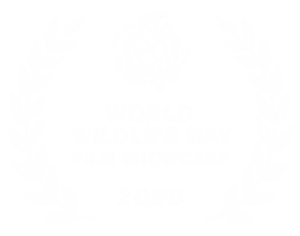 WWD_2020Laurels_White.png