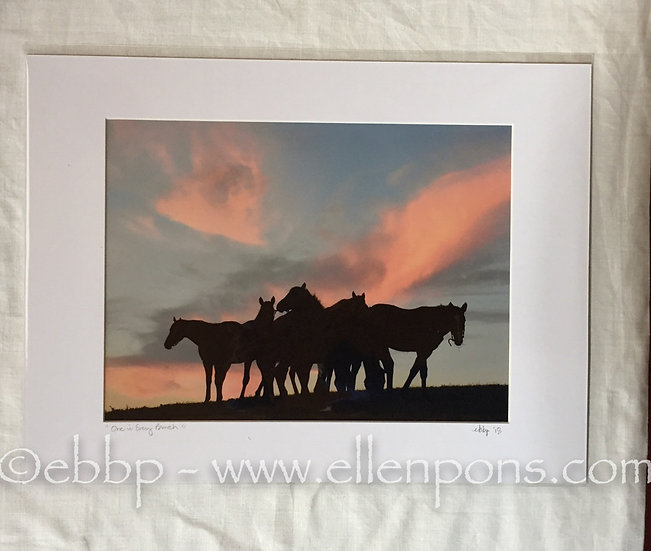 Medium Matted Print. Sunset Gathering print