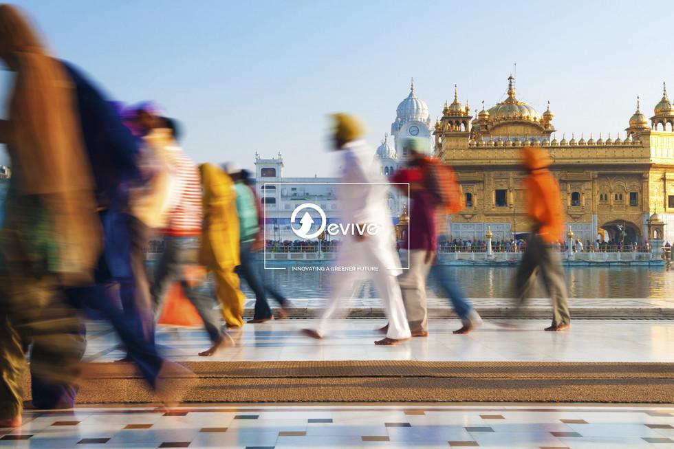 EVIVE: INDIA & P-LIFE