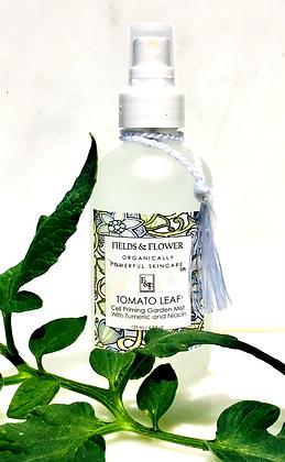 Tomato Leaf Cell Primer With Tumeric & Niacin - 4oz
