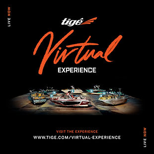 Tige Virtual Experience Square.jpg