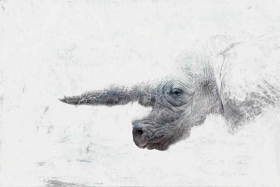 Dickhäuter,80x120cm,Öl,BleistiftundAsche auf Leinwand,2021-2(MG)-bestfinaldruck.jpg