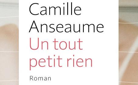 La critique d'Un tout petit rien de Camille Anseaume