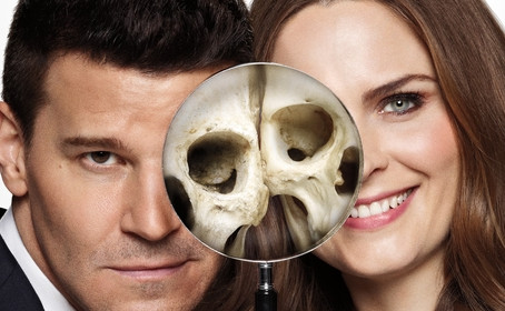L'affiche de la SDCC 2016 annonce la fin de Bones
