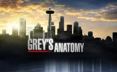 Une série dérivée de Grey's Anatomy sur les pompiers de Seattle