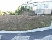 4春山.jpg