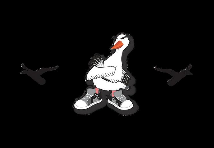 GymShoe_Logo_HomepageSlider.png