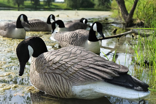 Flocked Head Canada Floaters per 6