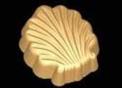 Scroll Shell Mold