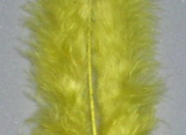 """Yellow Flats Feathers (5""""to 7"""")"""