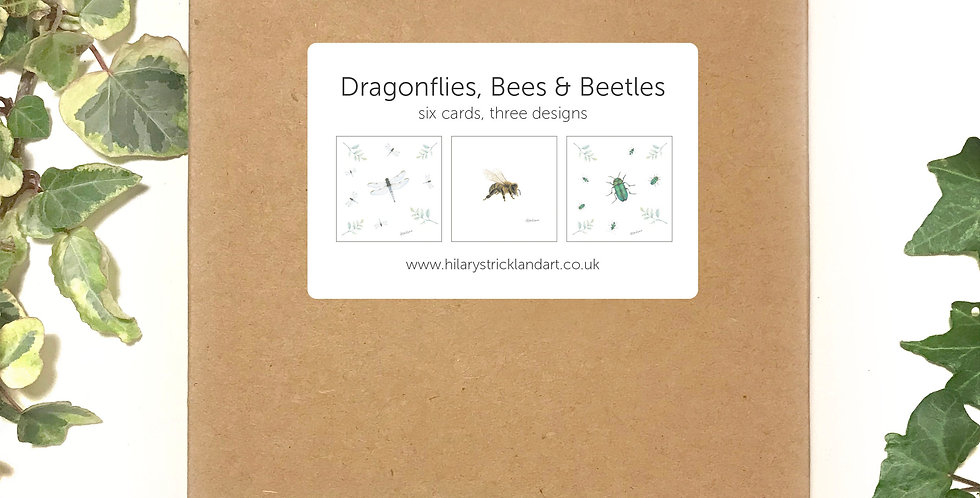 Dragonflies, Bees & Beetles  Boxed Card Set