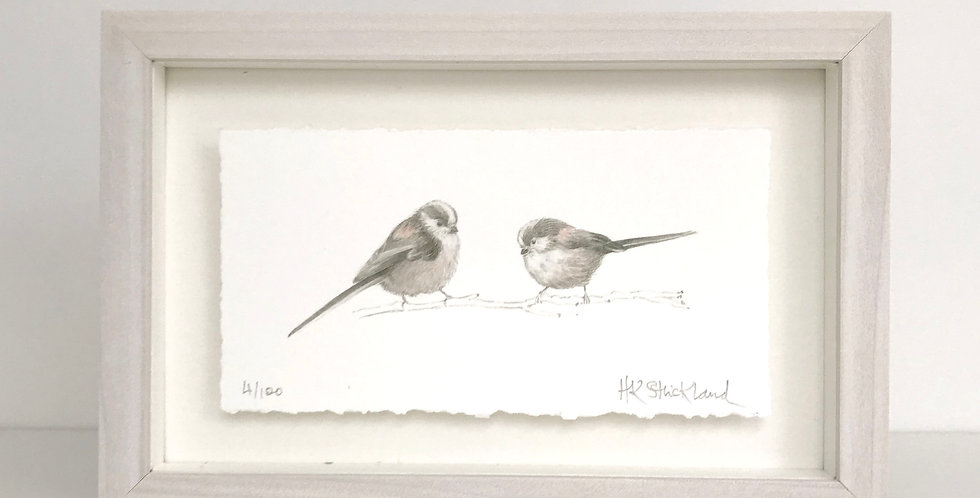 Long Tailed Tits framed print (available unframed)