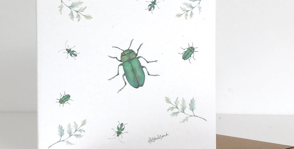 Scattered Beetles card