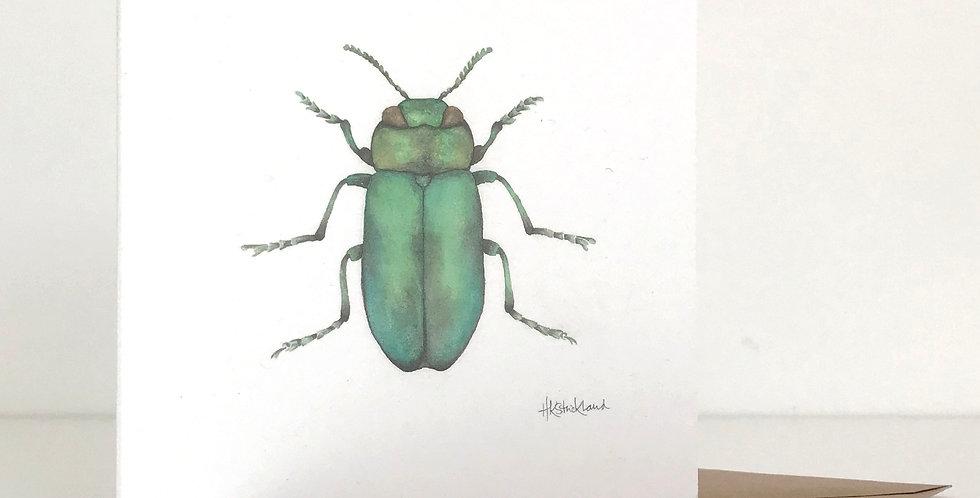 Jewel Beetle card
