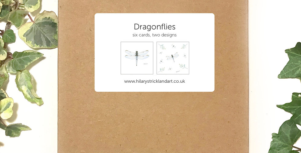 Dragonflies  Boxed Card Set