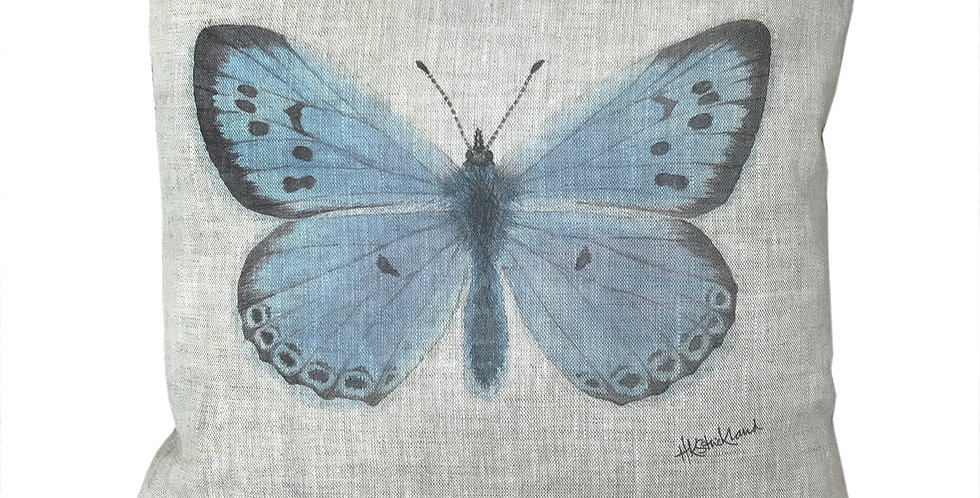 Large Blue Butterfly Cushion Cover