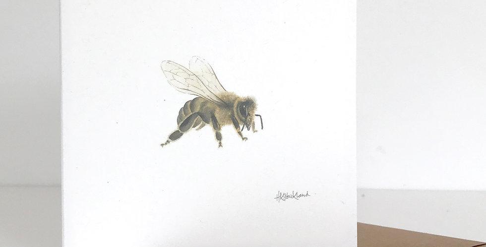 Little Honey Bee card