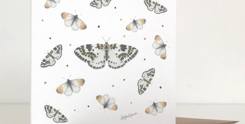 Scattered Butterflies and Moths card