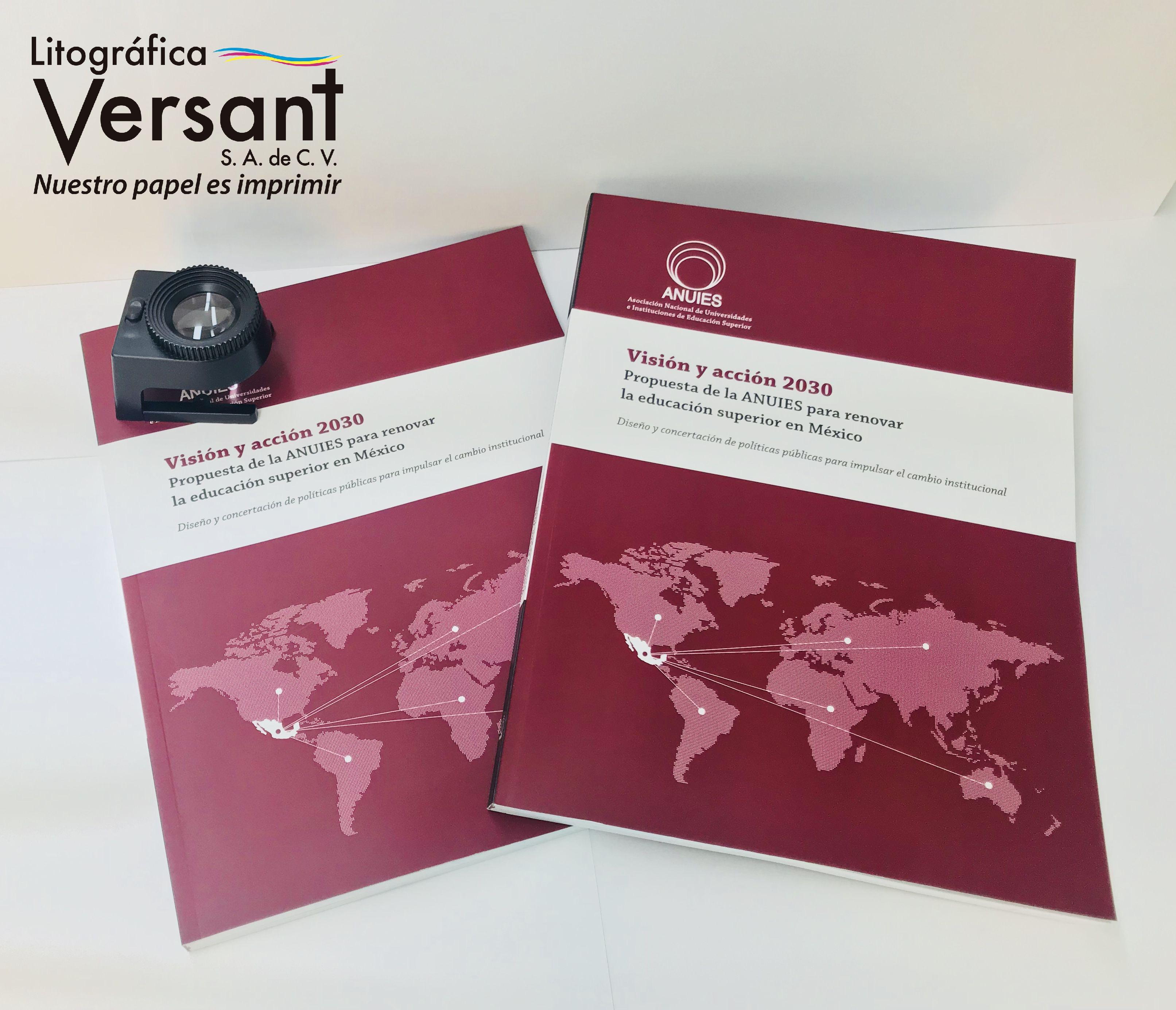 Libro Visión y Acción 2030