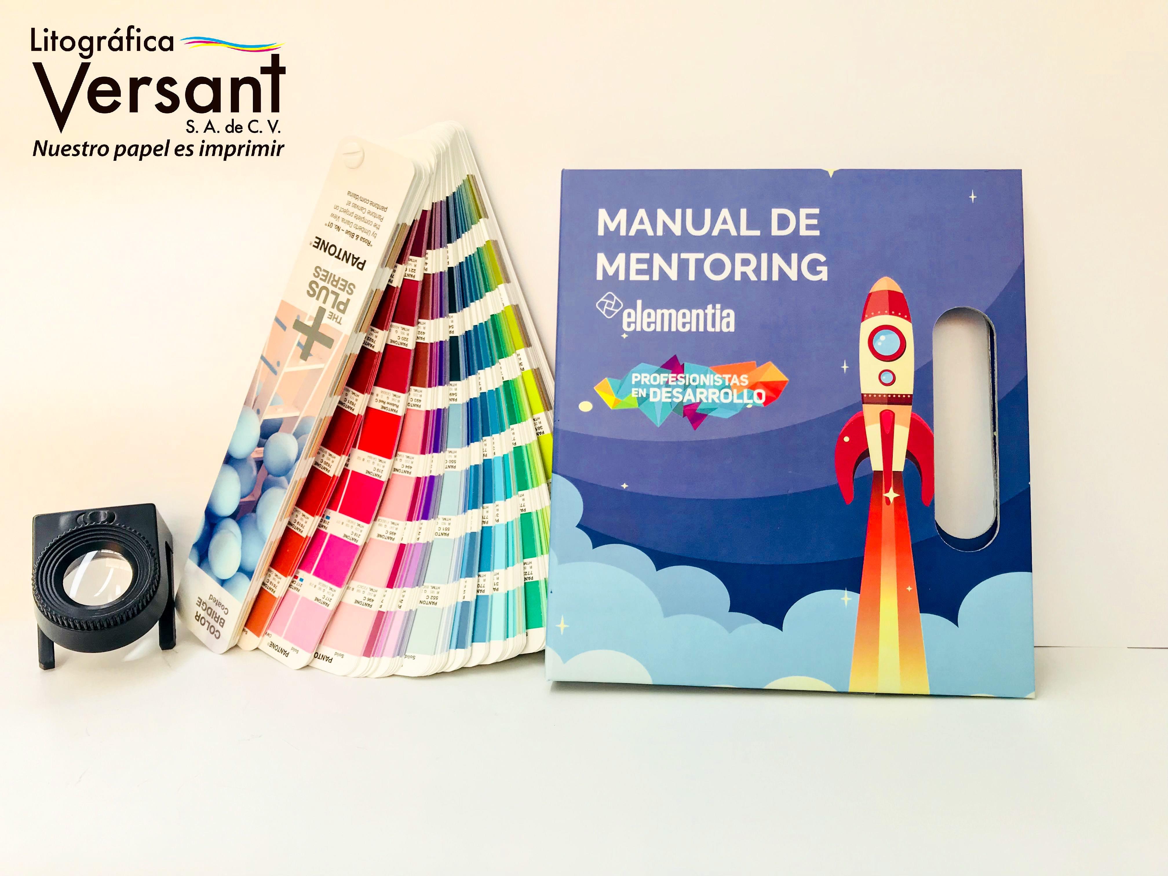 Manual de Mentoring