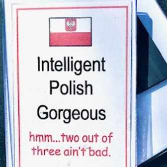 Polish Acrylic Magnet – Intelligent Polish Gorgeous