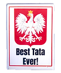 best_tata_magnet.png