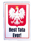 best_tata_magnet.png