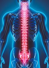 CORE-SCORE ANALYSIS | Align Chiropractic Singapore