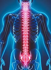 CORE-SCORE ANALYSIS   Align Chiropractic Singapore