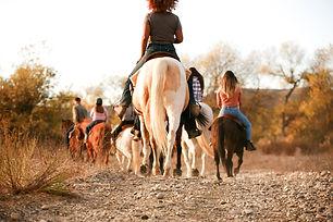 horse and pony rides.jpg