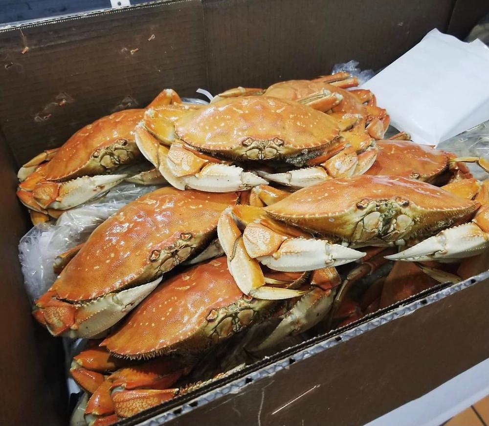 fresh El Rancho Market crabs from Morro Bay