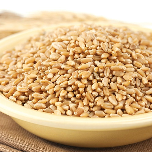 Non-GMO Prairie Gold Wheat Berries, 4 Lb